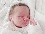 OLIVER GRAUSGRUBER Narodil se 19. srpna v liberecké porodnici mamince Kateřině Bednářové z Varnsdorfu. Vážil 3,10 kg a měřil 50 cm.