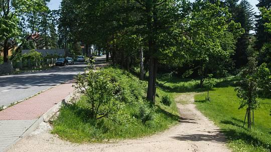 Cesta ve Zborovské rokli