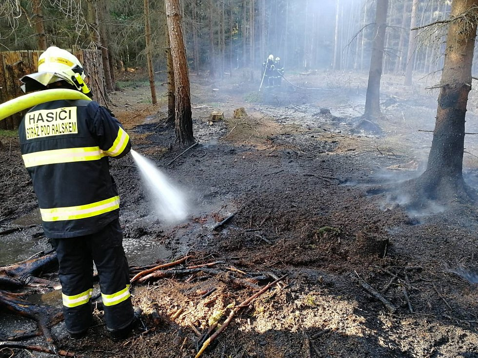 K požáru lesního porostu 20x20m vyjížděli hasiči v Hamru na Jezeře.