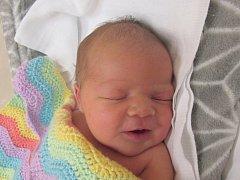 KRISTÝNA HOLUBOVÁ Narodila se 29. října v liberecké porodnici mamince Monice Holubové z Frýdlantu v Čechách. Vážila 4,06 kg a měřila 53 cm.