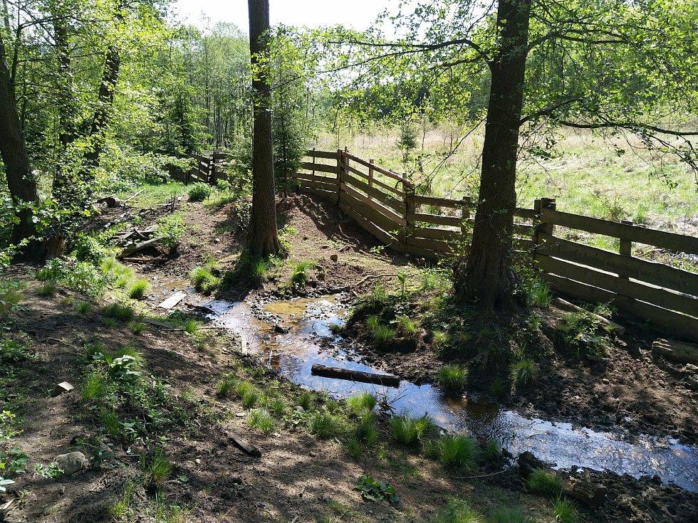 Ostrovský potok, který od výsypky teče dále do krajiny.