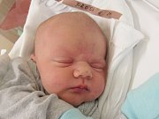TOBIÁŠ PROSA Narodil se 26. července v liberecké porodnici mamince Denise Šoltové z Frýdlantu v Čechách. Vážil 4,08 kg a měřil 51 cm.
