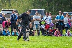 Vězeňská služba ČR předvedla 9. září kynologickou ukázku na dětském dni v libereckém Vesci.