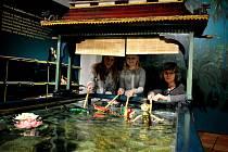 Diváci si mohou vyzkoušet vodní divadlo sami.
