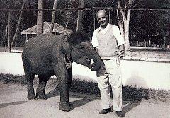 Slonice Rání přijela do Liberce před padesáti lety jako čtyřletá z indické Kalkaty.