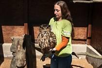 Záchranná stanice pro handicapovaná zvířata má nově tři řady voliér či výběh pro vodní ptactvo s jezírkem. Mezi aktuálně léčené živočichy patří i výr velký.