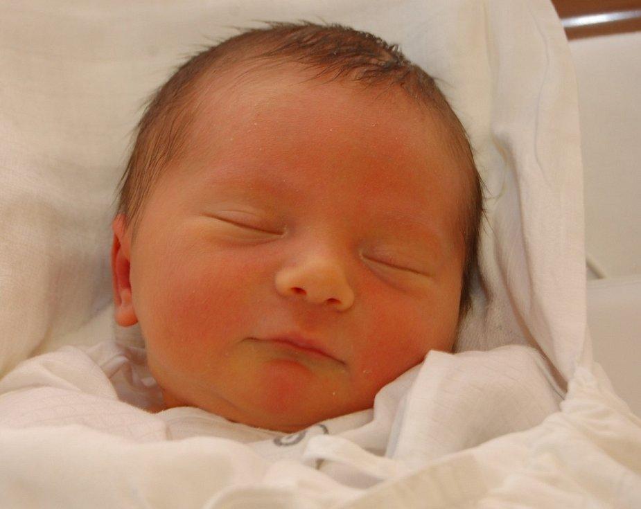 Mamince Tereze Čáslavské z Frýdlantu v Čechách se dne 1. ledna v liberecké porodnici narodil syn Tomáš. Měřil 48 cm a vážil 3,09 kg.