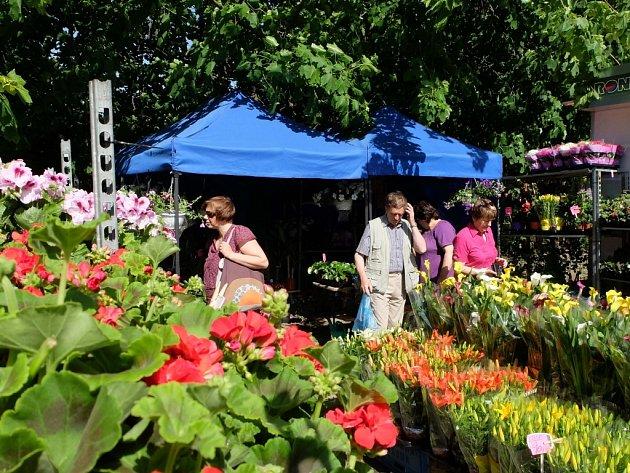 Ve středu zájmu návštěvníků jsou především stánky s květinami, bylinkami nebo stromky. Na veletrhu lze ale vidět i motokolečko nebo sádrovou houbu.