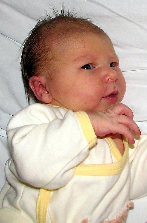 Erika Emma Běláčová se narodila 23. října  rodičům Erice a Dušanu Běláčovým z Liberce. Měřila 50 cm a vážila 3,5 kg.
