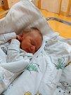 MATĚJ RYBÍN  Narodil se 2. ledna v liberecké porodnici mamince Renatě Vávrové z Oldřichova v Hájích. Vážil 2,70 kg a měřil 48 cm.