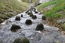TAJCH. Nově zajištěná hráz rybníka zabrání prosakování vody z přilehlého svahu.