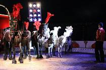 Cirkus Berousek Sultan v Liberci.
