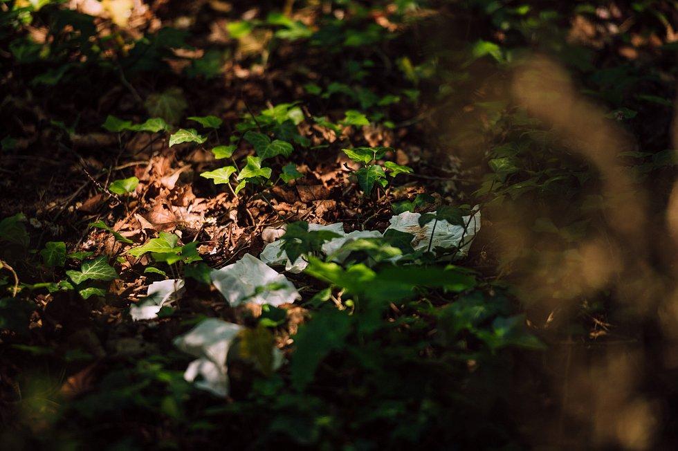 Kampaň vysvětluje návštěvníkům českých a moravských krajů, kteří nemají stoprocentní znalosti o pohybu a pobytu v přírodě, jak se vtomto prostředí chovat.