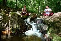 Lektorky ze studia Siddha Yoga si při příležitosti Mezinárodní dne jógy připravili pro zájemce speciální lekci pod širým nebem. V případě špatného počasí proběhne v prostorách studia.
