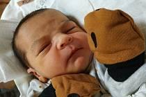Samuel Pohl. Narodil se 16. ledna v 14:31 hodin mamince Adriance. Vážil 3,7 kg a měřil 51 cm.