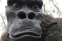 Z pozoruhodné výstavy Giganti v liberecké zoologické zahradě.