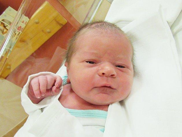 VIKTOR HOFMAN Narodil se 8. března v liberecké porodnici mamince Tereze Hofmanové z Jablonného v Podještědí. Vážil 3,60 kg a měřil 51 cm.