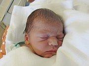 JAKUB WENDLER Narodil se 7. června v liberecké porodnici mamince Nikole Wendlerové z Frýdlantu v Čechách. Vážil 3,03 kg a měřil 49 cm.