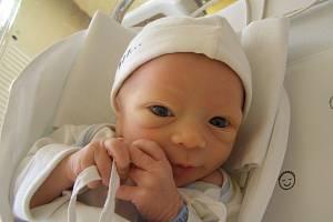 Antonín Šneiberg se narodil 16. dubna v liberecké porodnici mamince Hedvice Šneibergové z Liberce. Vážil 3,3 kg a měřil 48 cm.