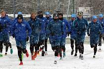 Nový trenér David Holoubek začal ve středu přípravu ve Slovanu Liberec. Jeho asistenty jsou Jarošík, Holeňák a Čech. Na úvodním, šedesátiminutovém tréninku bylo jedenadvacet hráčů.