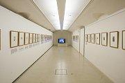 Oblastní galerie v Liberci představila 17. května výstavu koláží Adolfa Hoffmeistera z roku 1964 na téma lidských osudů a strašlivých nástrah života. Snímek je z 21. května.