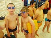Ilustrační foto - plavání.