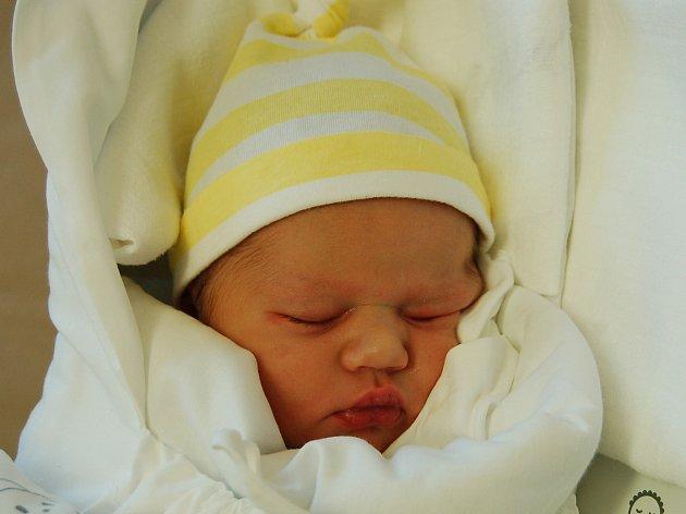 TÝNA TVRZNÍKOVÁ  Narodila se 14. prosince v liberecké porodnici mamince Adéle Jiřenové z Liberce. Vážila 3,40 kg a měřila 50 cm.