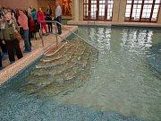 Termální lázně v Chrastavě
