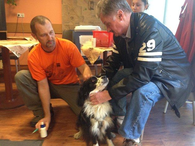 VAKCÍNU PROTI VZTEKLINĚ dostaly v Liberci během pondělí desítky psů. Některé veterináři naočkovali v Naději, další si našli v terénu.