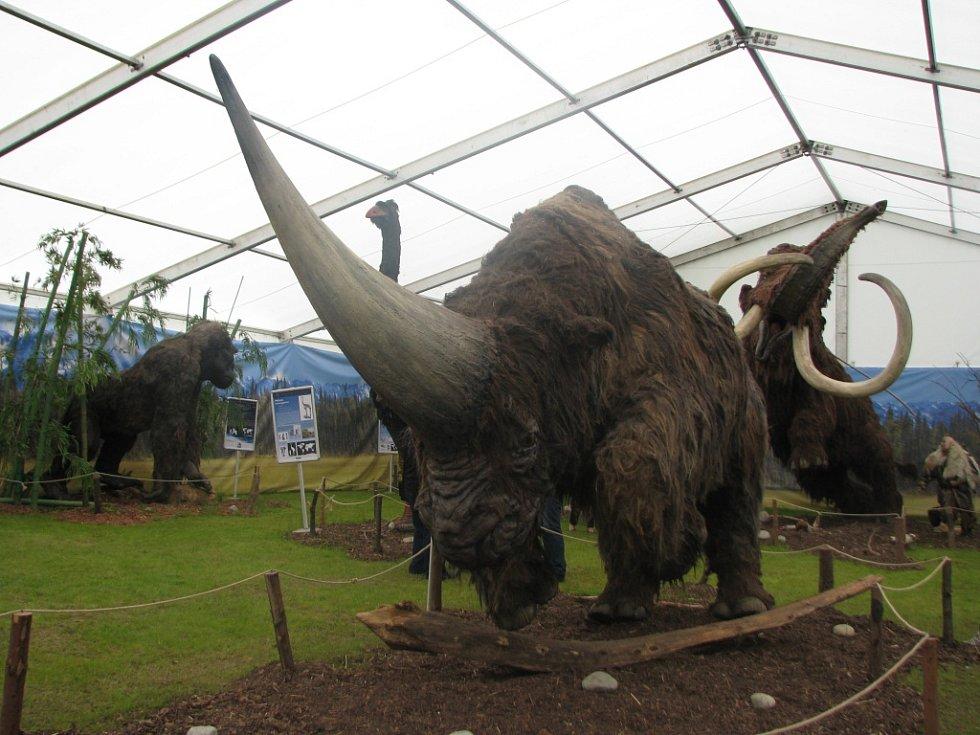 DVĚ DESÍTKY modelů zvířat z doby ledové jsou k vidění v liberecké zoologické zahradě.