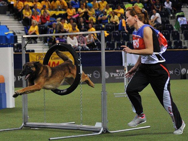Světový šampionát - Agility 2012 v Tipsport areně