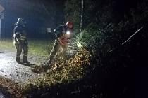Od neděle do pondělního rána řešili hasiči v Libereckém kraji v souvislosti s vichřicí kolem 180 událostí.