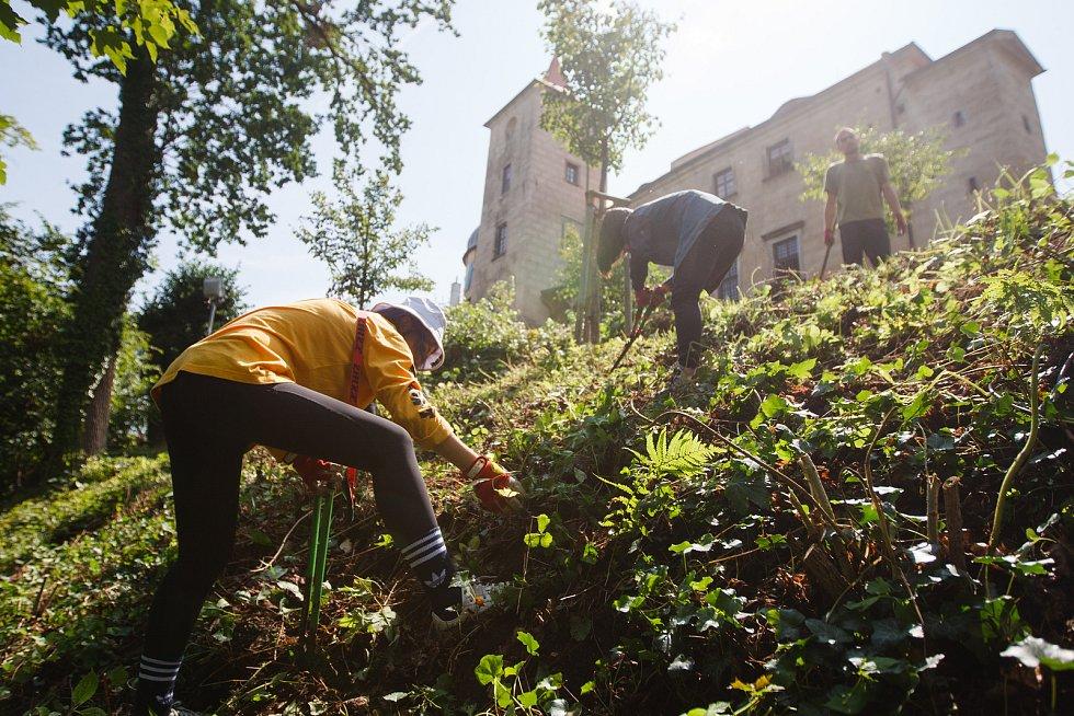 Na hradě Grabštejn pomáhají dobrovolníci. Starají se o místní zeleň a drobné opravy hradu.