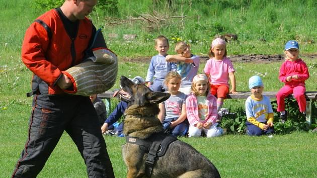 Ukázka práce policejních psovodů.