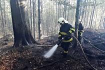 Hašení bukového lesa komplikuje velké převýšení a skalnatý terén se spoustou strží, do kterého nemohou hasiči najet svou těžkou technikou. V provozu je přes 600 metrů hadic.