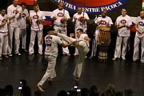 Mistrovství Evropy v capoeiře. Velké finále 4. ročníku mistrovství Evropy v capoeiře hostí Dům kultury.