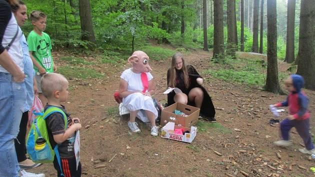 Pohádkový les. Ilustrační fotografie.