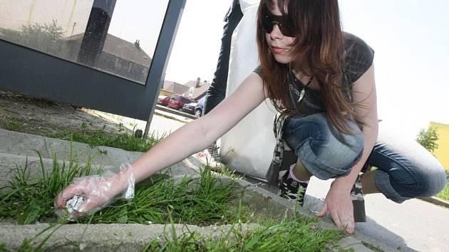 Úklid v Liberci v rámci celosvětové kampaně Clean Up the World.