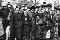 Vězni v koncentračním táboře Osvětim po osvobození v roce 1945.
