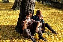 Tektandr – čaj spříběhem. Ondřej Linhart s maminkou Alenou.