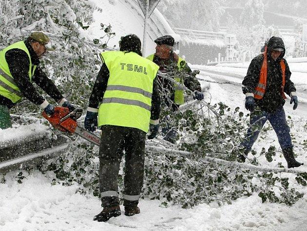 Dopravu komplikovaly také spadané větve.