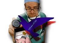Bezplatné zdravotnictví je za poplatek.