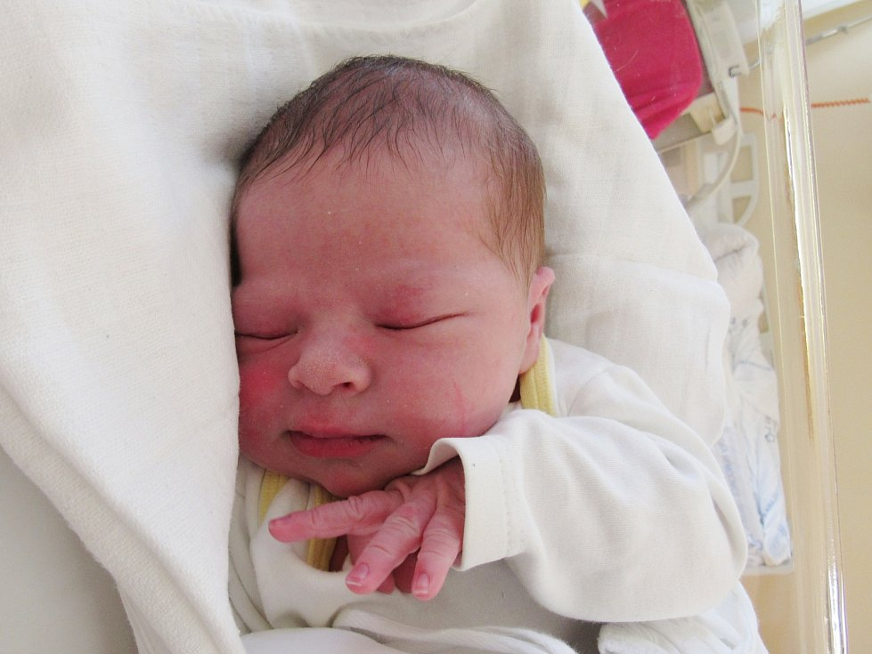 HERMÍNA HRONOVÁ Narodila se 31. července v liberecké porodnici mamince Pavlíně Jelenové z Liberce. Vážila 3,64 kg a měřila 52 cm.