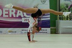 Čtvrté finálové kolo Poháru federací v gymnastickém, dance a team aerobiku proběhlo 18. listopadu v Liberci.