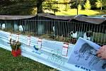 Chovatelé z České Dubu uspořádali výstavu.