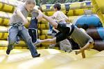 Dětský den připravil Krajský úřad vLiberci, 2008.