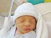 VENDULA BRÁDKOVÁ Narodila se 22. srpna v liberecké porodnici mamince Pavle Brádkové z Liberce. Vážila 2,33 kg a měřila 47 cm.