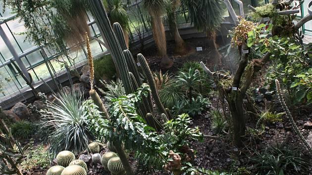 Pokud trávíte léto v Liberci, nabízíme tip na návštěvu. Vyrazte do Botanické zahrady, která je nejstarší v České republice.