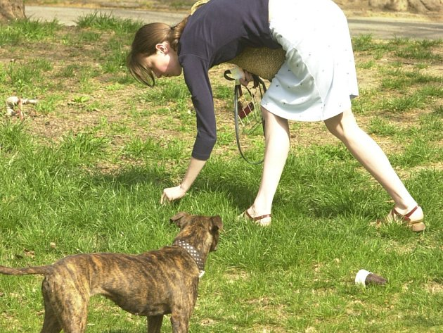 V Liberci na některých místech chybí koše na psí exkrementy.