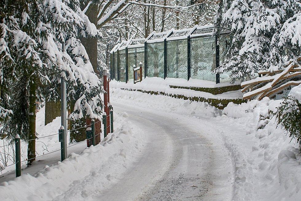 Liberecká zoo začátkem roku 2021.